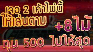 มาด้วยเงินทุนเพียง 500 บาทเพื่อเล่นบาคาร่า คำแนะนำหากอยากเล่นบาคาร่าแบบทุนมีทุน 500 บาท